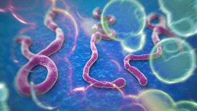 El Ébola es un problema de seguridad