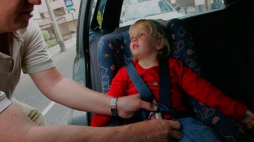 Uso del cinturón evitaría 40% de muertes en hechos viales